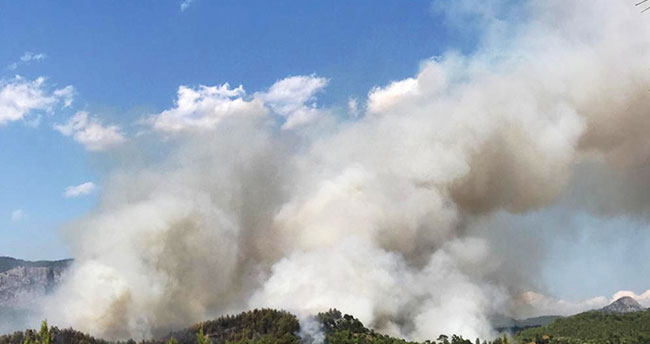 Muğla'daki orman yangını sürüyor! Konya'dan da ekip gitti
