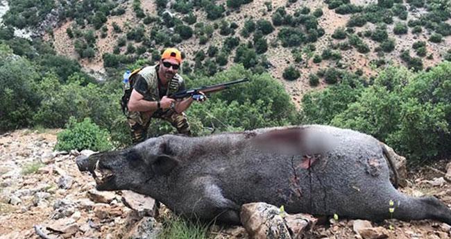 Karaman'da yaban domuzu avı
