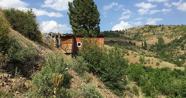 Konya'da bir vatandaş ardıç gövdesinin etrafına ev yaptı