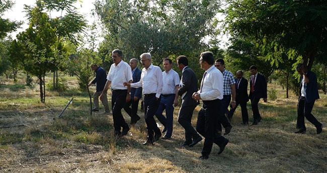 Konya Şeker'in ağaçlandırma projesine destek