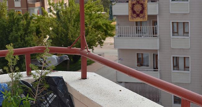 Konya…Balkona yumurtlayan güvercine aile bireyleri gibi sahip çıktılar