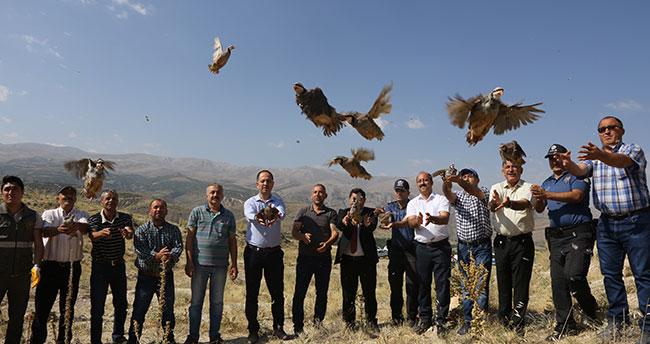 Konya'da doğaya 500 keklik salındı