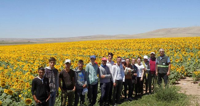 Konya'da tarım işçilerinin bulduğu yaralı leylek tedaviye alındı