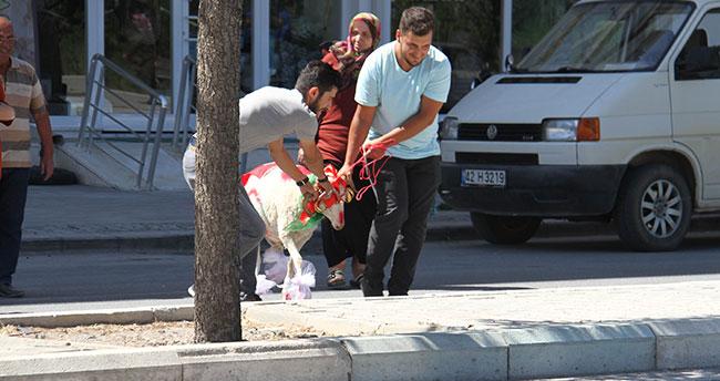 """Konya'da gelin adayına """"süslü koç"""" gönderme geleneği yaşatılıyor"""