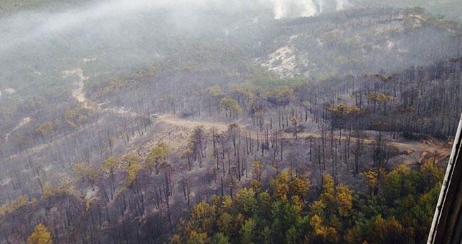 Eskişehir'deki orman yangını kontrol altına alındı