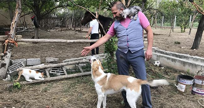 """Konya'da sıra dışı bir doktor: """"Hayvanlar hayatıma her zaman güzellik katıyor"""""""