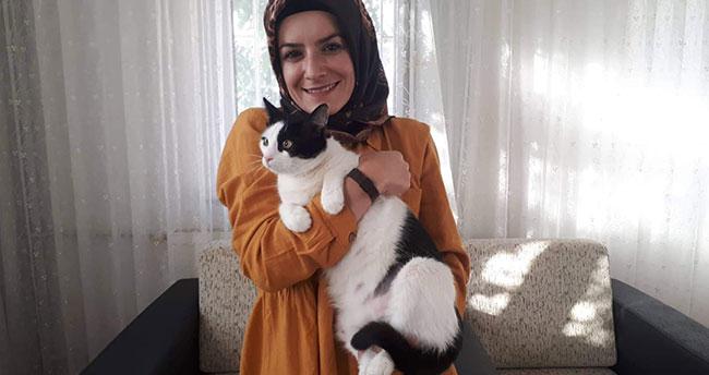 Beyşehirli anneler bu kez hasta hamile kedinin imdadına yetişti