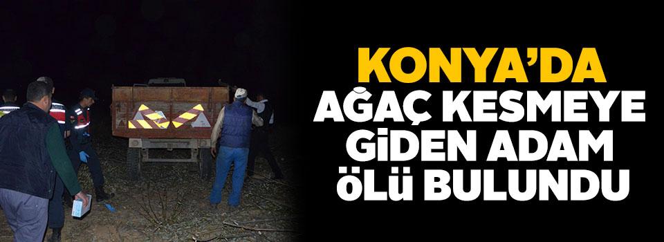 Konya'da ağaç kesmeye giden yaşlı adam ölü bulundu