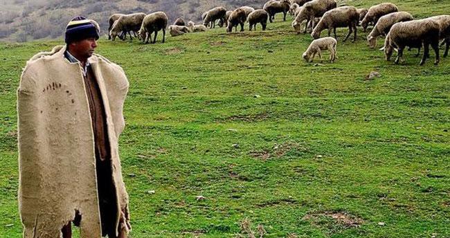 5 bin TL maaşı beğenen çıkmadı! Afganistan'dan 150 bin çoban ithal edilecek