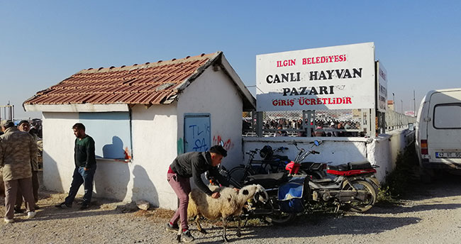 Konya'nın bu ilçesinde hayvan pazarındaki veba karantinası sona erdi