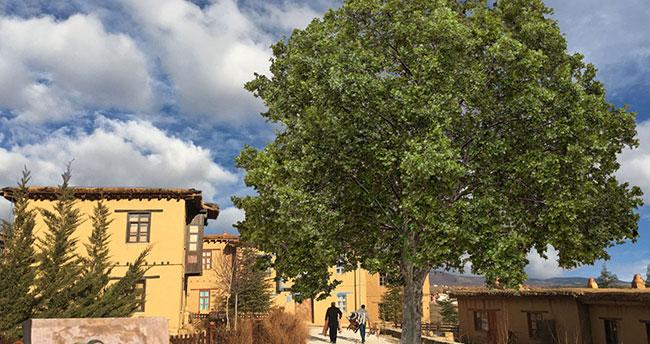 Yıldız Kenter'in ismi Konya'da sanatçıların köyünde yaşatılacak