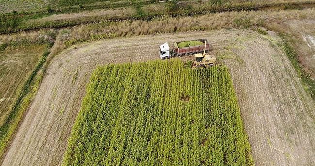 Tarıma dayalı yatırım projeleri için süre uzatıldı