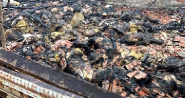 Konya'da ahır yangınında 240 hayvanı telef olan üretici için yardım kampanyası