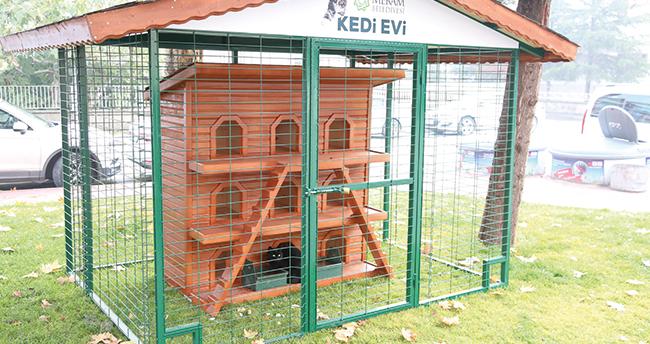 Meram Belediyesi, sokak hayvanları için çalışmalarını hızlandırdı