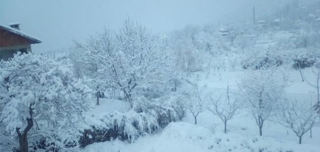 Konya'da kar yağışı nedeniyle çatısı çöken mandırada 6 hayvan telef oldu