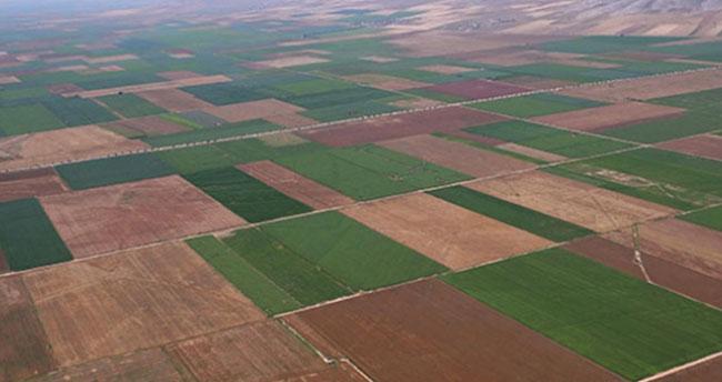 Konya'da 857 bin 90 dekar arazi toplulaştırıldı