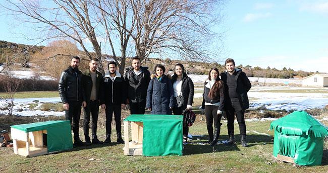 """Konya'da üniversite öğrencilerinden sokak hayvanlarına """"sıcak bir yuva"""" projesi"""
