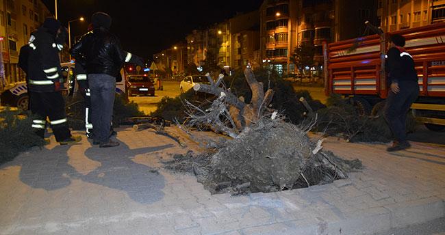 Konya'da etkili olan fırtınada ağaç kökünden söküldü, çatılar uçtu