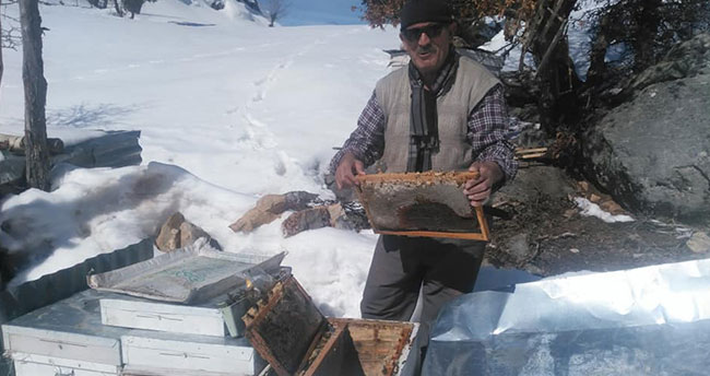 Hadimli arıcılar bahar bakımına başladı