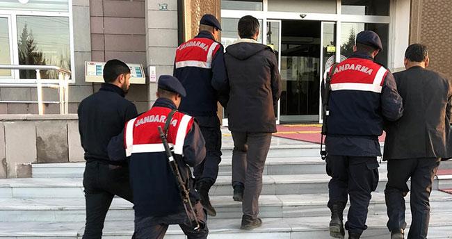 Hayvanları Konya'da çaldılar, jandarmanın takibiyle Şanlıurfa'da yakalandılar