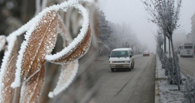İç Anadolu Bölgesi'nde 4 il için zirai don uyarısı