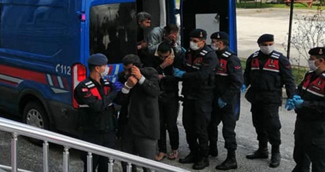 Konya'da 15 büyükbaş hayvanı çaldıkları iddiasıyla yakalanan 7 şüpheli tutuklandı