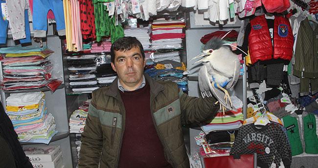 Konya'da bir kişi evinin önünde bulduğu yaralı kuşu yetkililere teslim etti