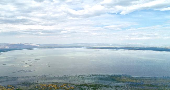 Son yağışlar Akşehir Gölünde su seviyesini artırdı