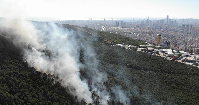 İstanbul Kayışdağı ormanında yangın çıktı