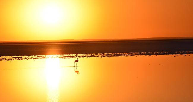 Tuz Gölü'nde gün batımı büyülüyor