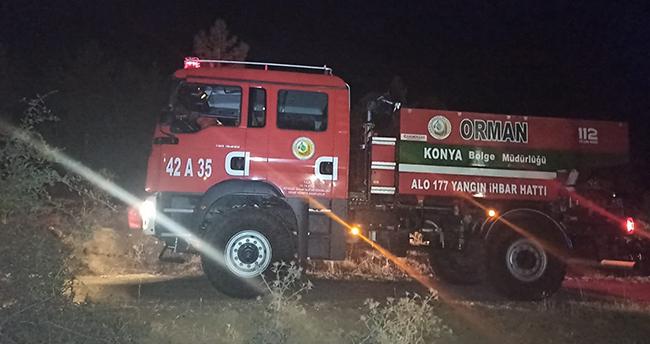 Konya'nın önemli simgelerinden Kuğulu Parkta yangın paniği