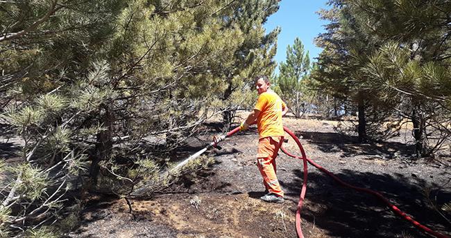 Konya'da maki yangını! 2 hektarlık alan zarar gördü