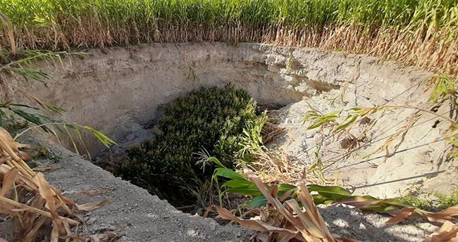 """Konya'da mısır ekili tarlada dev bir obruk oluştu: """"Ürperti ve şaşkınlık yaşadık"""""""