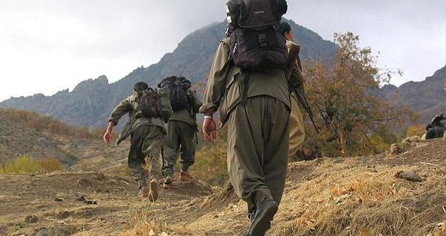 Iğdır'da 2 terörist ikna çalışmaları sonucu teslim oldu