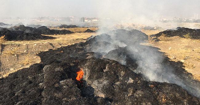 Konya'da 5 bin saman balyası yandı