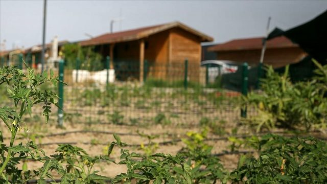 Tarımda 'torba yasa' geri çekildi, hobi bahçeleri düzenlemesi ertelendi
