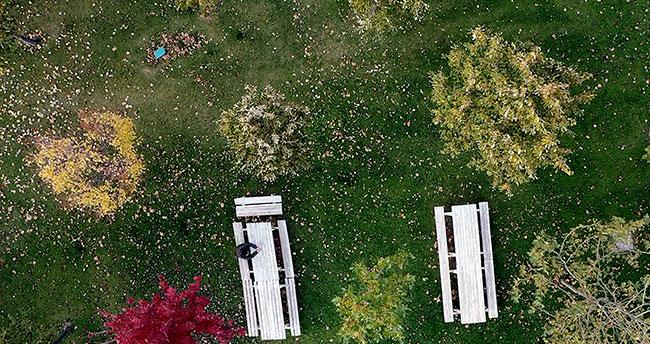 Konya'nın parkları sonbahar görüntüsüyle büyülüyor