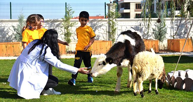 Konya'da bir anaokulunun öğrencileri at, ceylan ve kuzularla eğitim görüyor