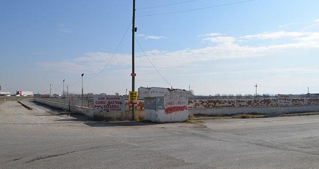 """Konya'da hayvan pazarında """"şap"""" karantinası"""