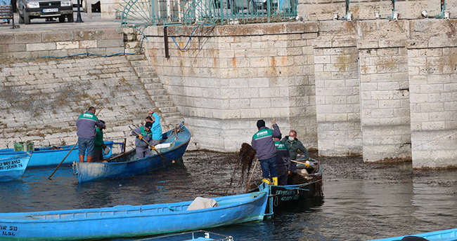 Beyşehir Gölü kıyısında kayıklarla ot temizliği