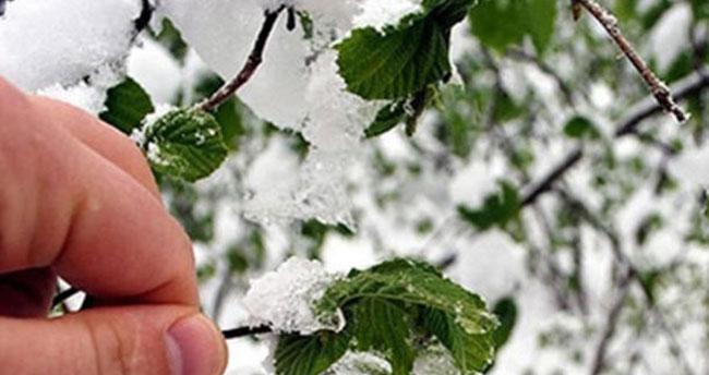 İç Anadolu Bölgesi'ndeki 4 il için kar ve zirai don uyarısı