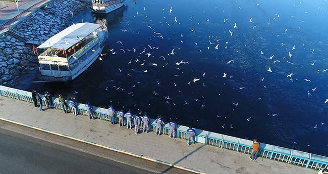 Belediye ekipleri Beyşehir Gölü'nde yaşam süren kuşları yem ve ekmekle besledi