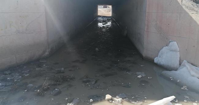 Aksaray'da su dolu menfezden geçen 7 koyun boğularak telef oldu