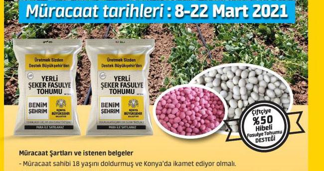 Başvurular başladı! Konya Büyükşehir'den üreticiye yerli şeker fasulye tohumu desteği
