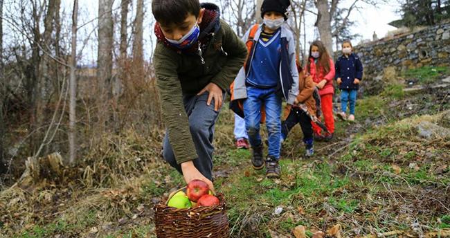 Konya'da minik öğrencilerin elmaları, kuşlara hayat oluyor