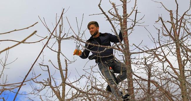 Konya'nın Hadim ilçesinde kiraz bahçeleri kar altında yeni sezona hazırlanıyor