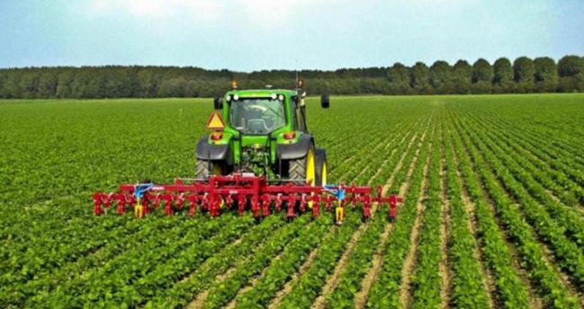 Konya, tarımsal üretimde Türkiye'de ilk sırada